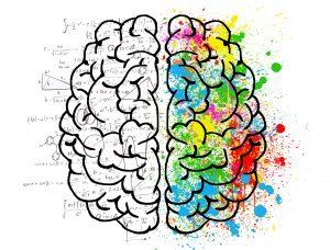 Illustration showing psychological division of the cerebral brain hemispheres.