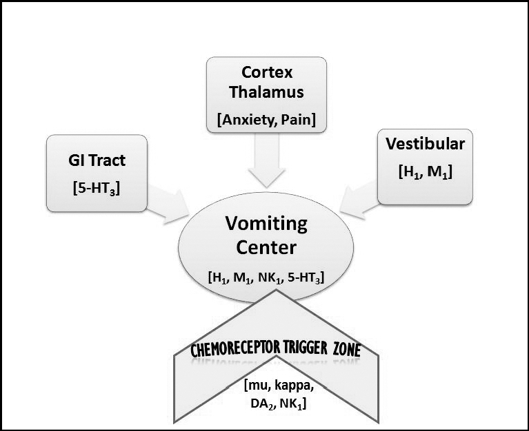Chart showing pathophysiology of nausea and vomiting