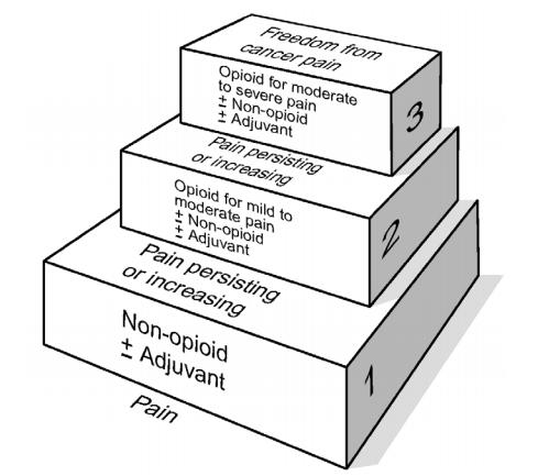 Image of The World Health Organization's Pain Ladder